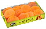 PITTED APRICOTS 200GR