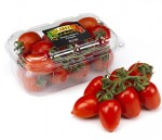 piccadilly tomatoes 500gr